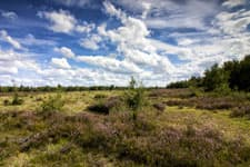 Natuurschoon Noord-Brabant